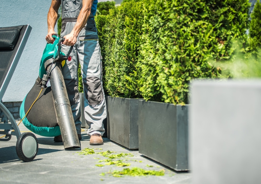 best garden vacuums